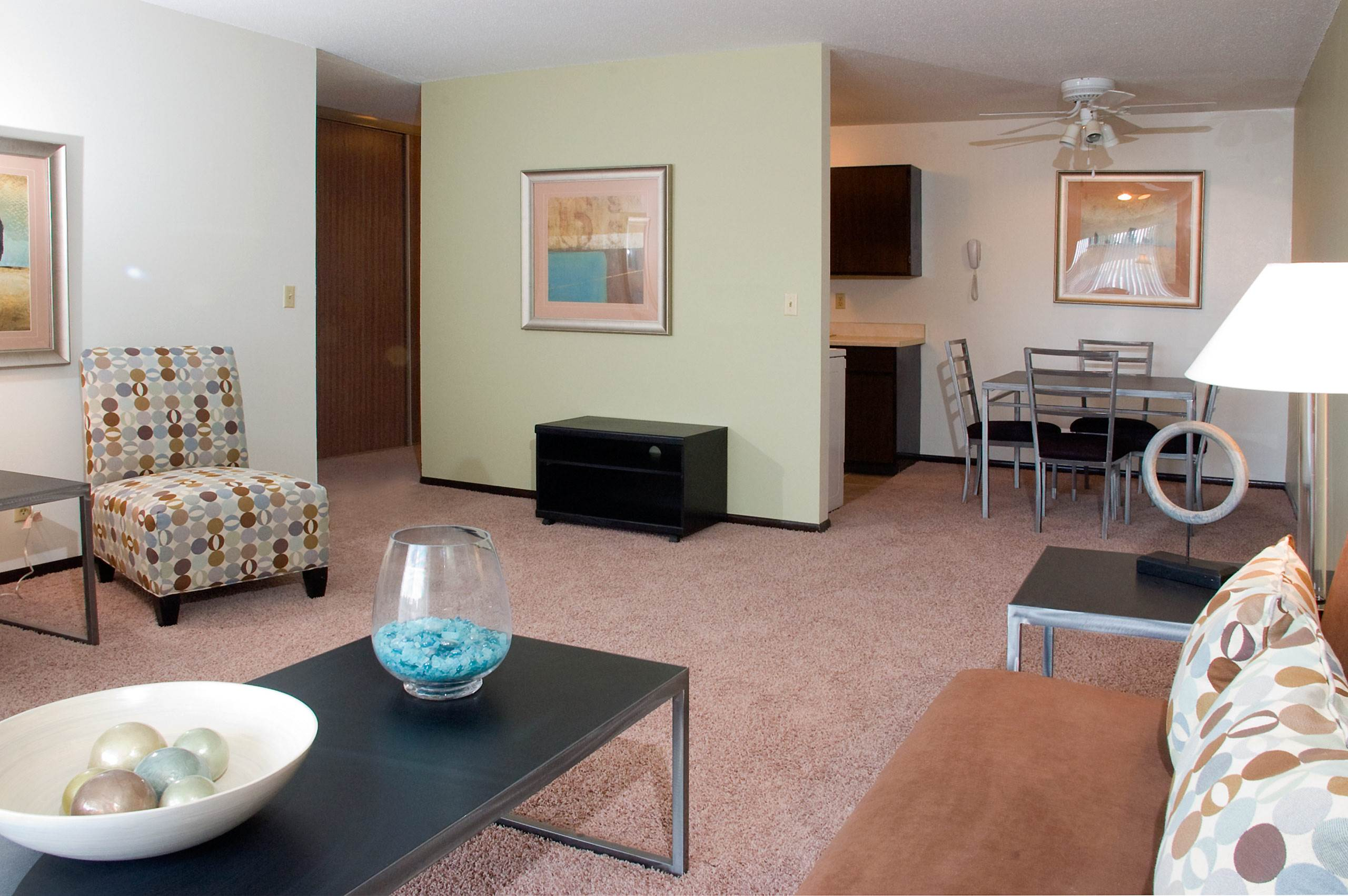 Apartments and Townhomes in the Minneapolis Metro Area